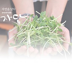 Breathable Freshness Packaging Film 자담 통기성 필름